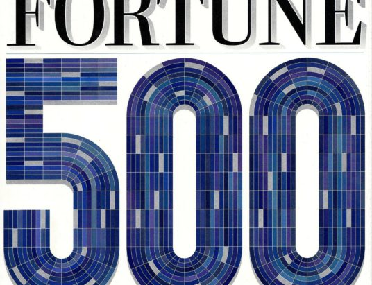 fortune 500 mentors coming to pakistan in february